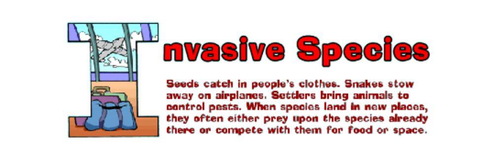 Invasive Species, Sixth Grade Reading Passage